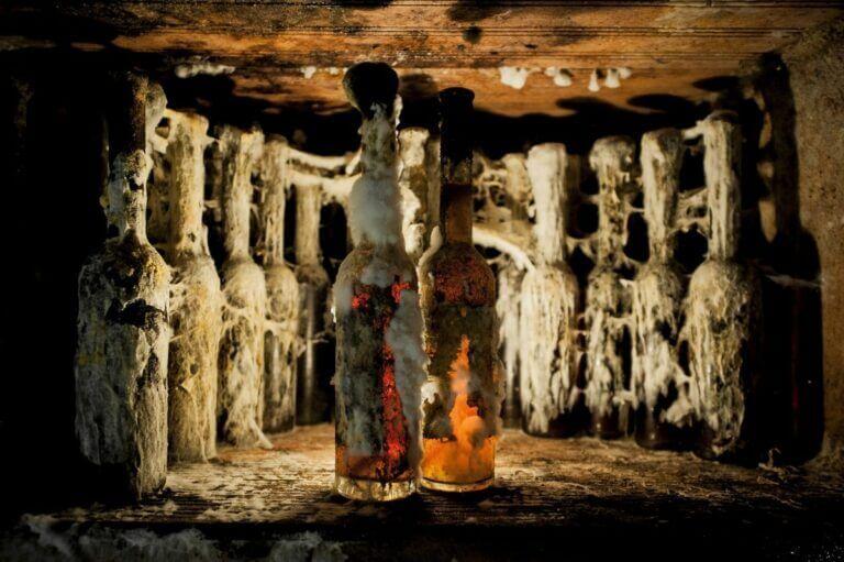 archívne vína
